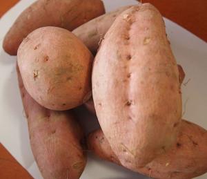 鹿児島の安納芋